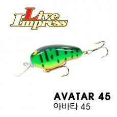 AVATAR 45 / 아바타 45
