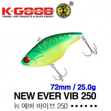 NEW EVER VIB 250 / 뉴 에버바이브 250